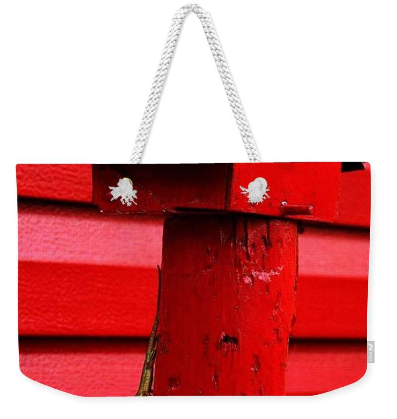 Red Bird House Weekender Tote Bag featuring the photograph Fabulous Acres by Pattie Frost