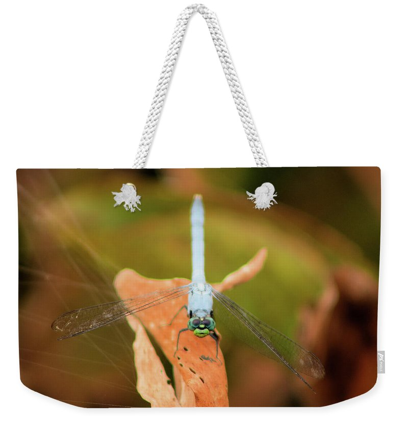 Dragonfly Weekender Tote Bag featuring the photograph Face Of The Dragon by Karl Ford