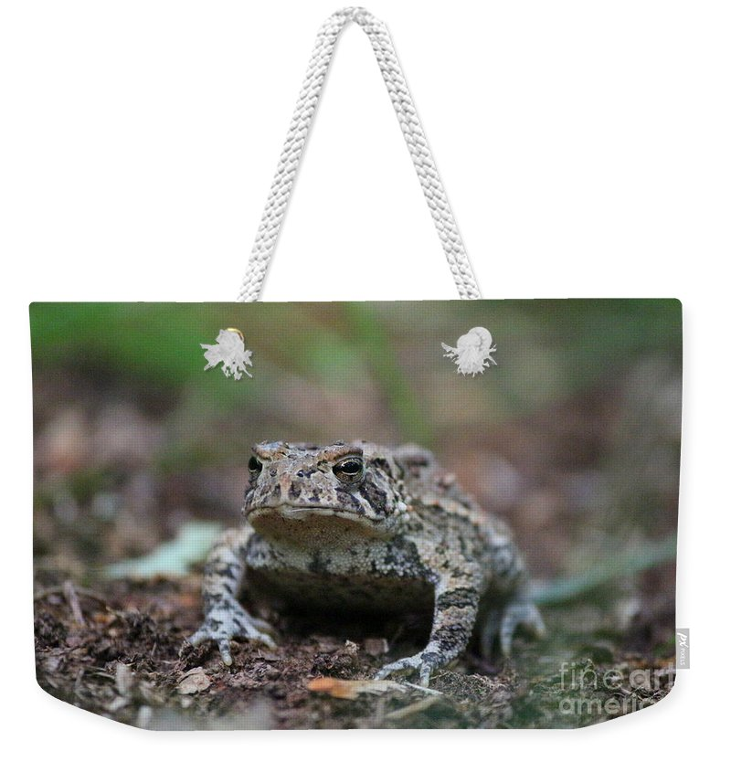 Toad Weekender Tote Bag featuring the photograph Face To Face With A Fowler Toad by Neal Eslinger