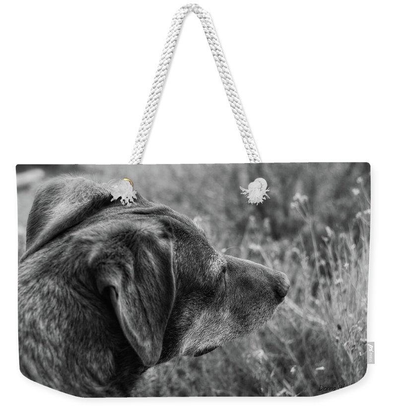 Dog Weekender Tote Bag featuring the photograph Faithful by Donna Blackhall