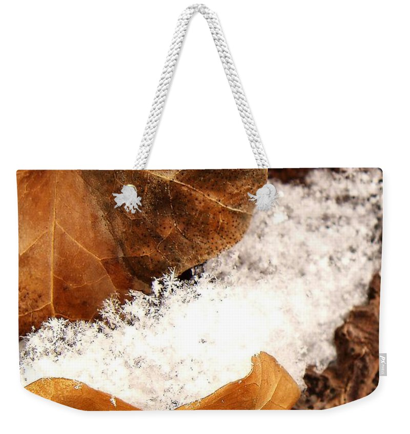 Fall Weekender Tote Bag featuring the photograph Fall And Winter by Gaby Swanson