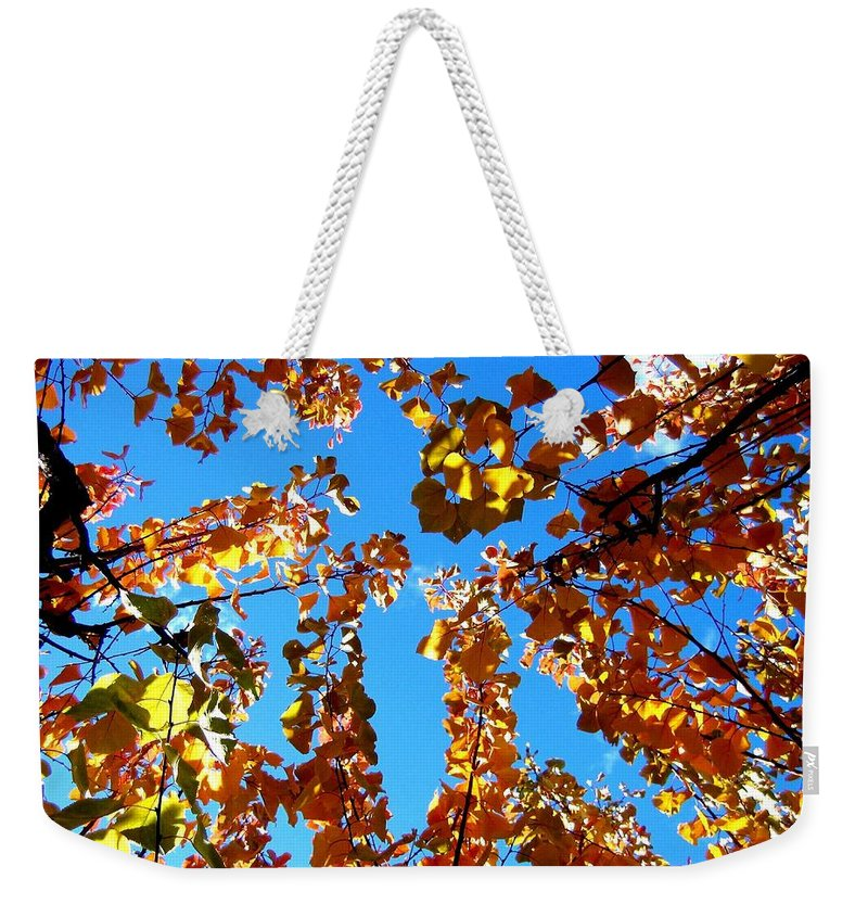 Apricot Leaves Weekender Tote Bag featuring the photograph Fall Apricot Leaves by Will Borden