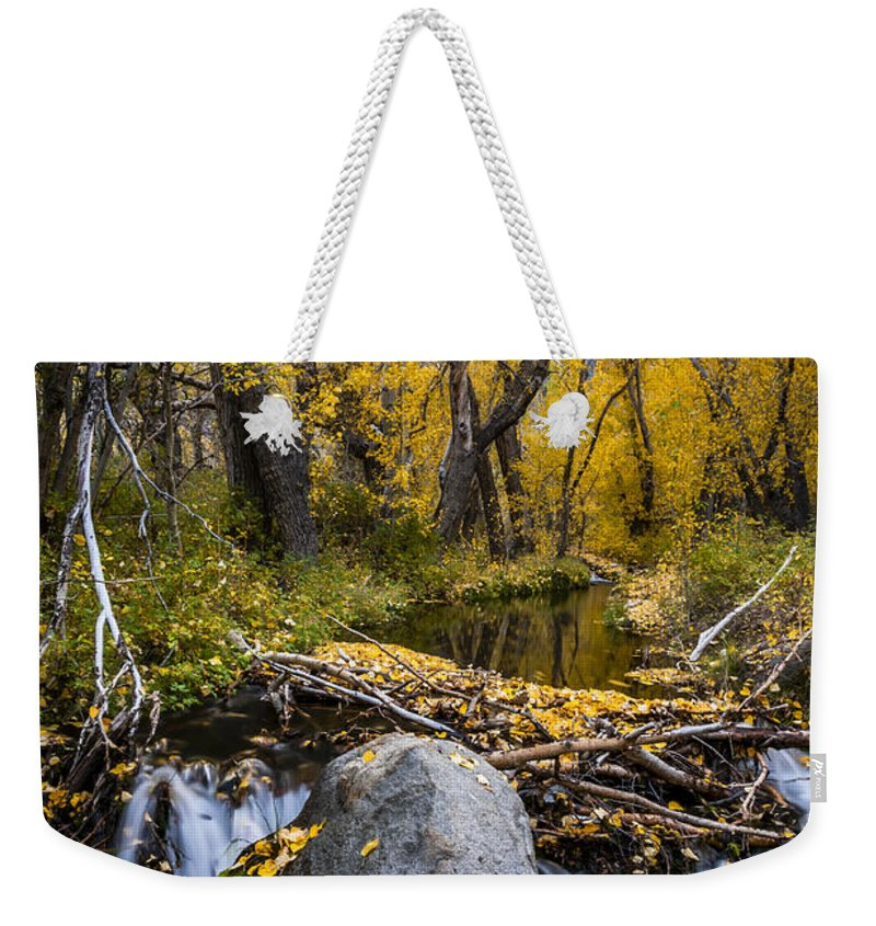 Fall Weekender Tote Bag featuring the photograph Fall At Mcgee Creek by Cat Connor