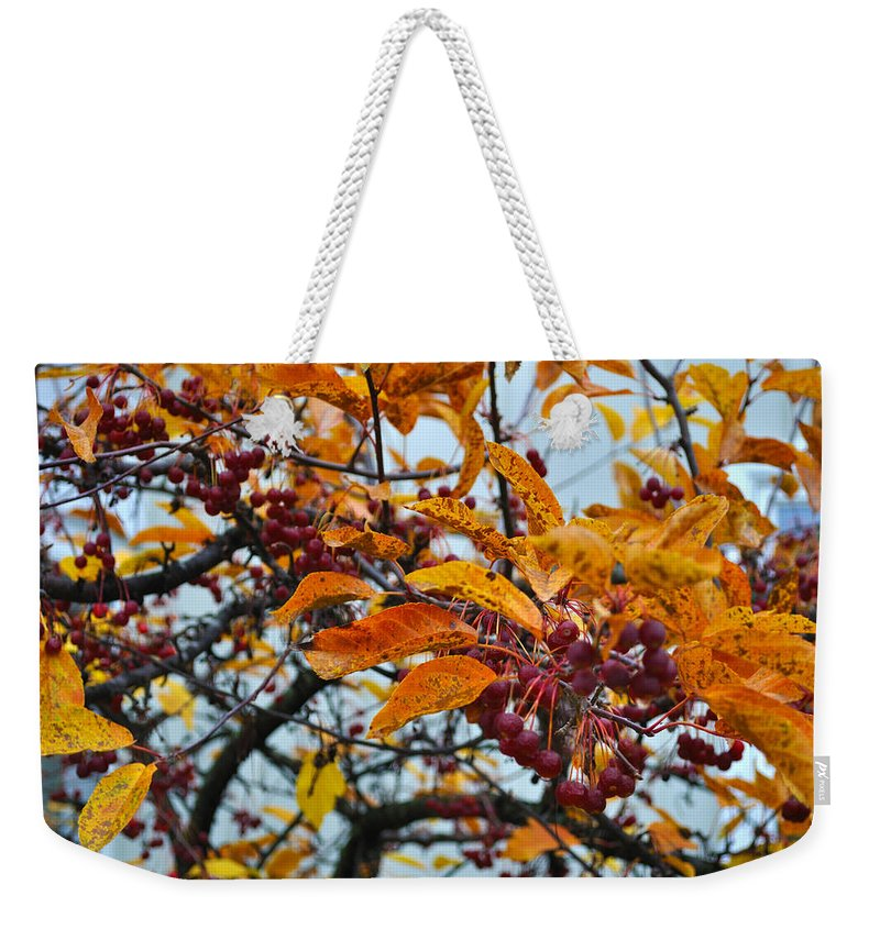 Berries Weekender Tote Bag featuring the photograph Fall Berries by Tim Nyberg