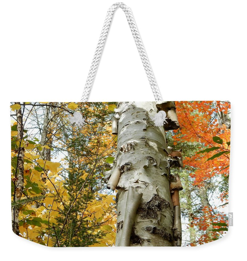 Birch Weekender Tote Bag featuring the photograph Fall Birch Tree by Brian McGary