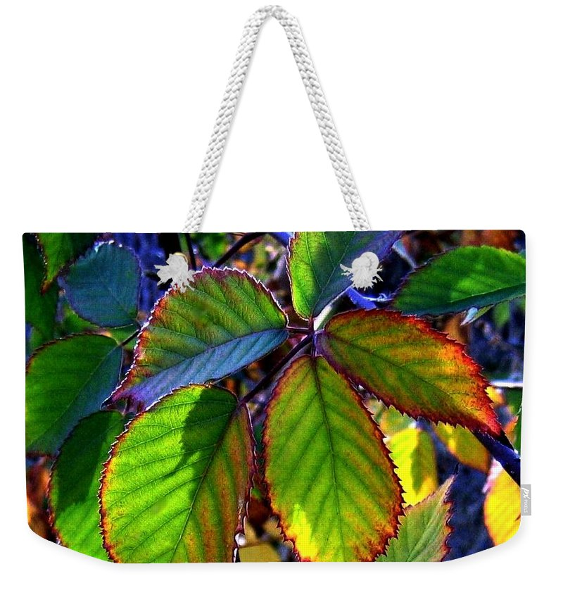 Fall Weekender Tote Bag featuring the photograph Fall Blackberry by Will Borden