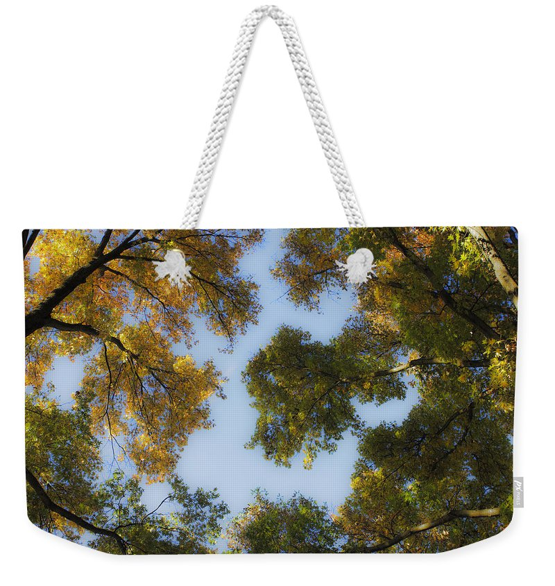 Fall Weekender Tote Bag featuring the photograph Fall Canopy In Virginia by Teresa Mucha