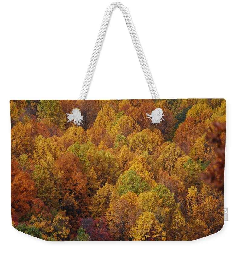 Fall Weekender Tote Bag featuring the photograph Fall Cluster by Eric Liller
