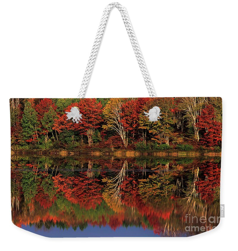 Dave Welling Weekender Tote Bag featuring the photograph Fall Color Reflected In Thornton Lake Michigan by Dave Welling