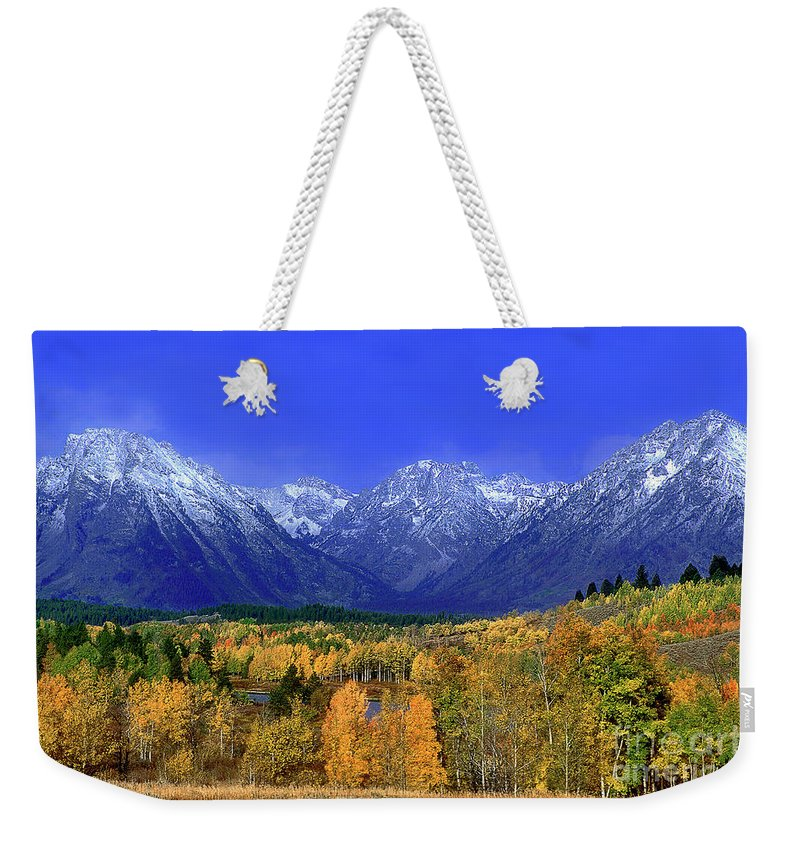 Grand Tetons National Park Weekender Tote Bag featuring the photograph Fall Colored Aspens Grand Tetons Np by Dave Welling