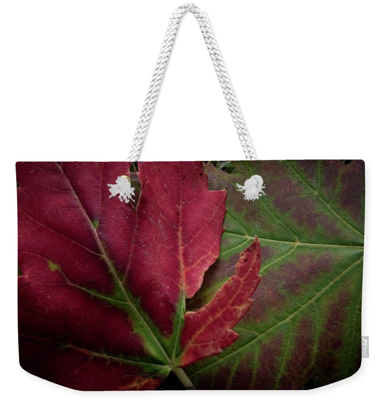 Photograph Weekender Tote Bag featuring the photograph Fall Colors by John Unwin