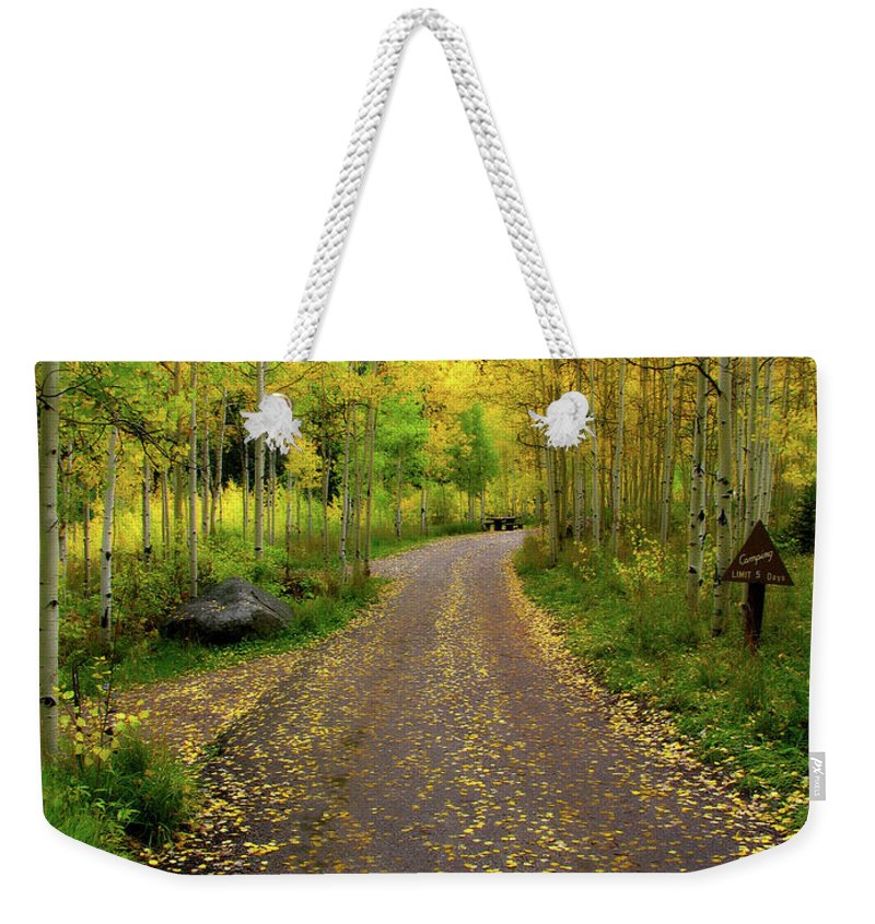 Fall Weekender Tote Bag featuring the photograph Fall Dream by Scott Mahon