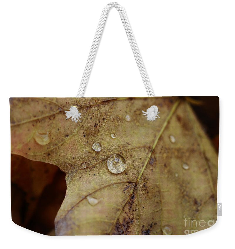 Droplet Weekender Tote Bag featuring the photograph Fall Droplets by Deborah Benoit