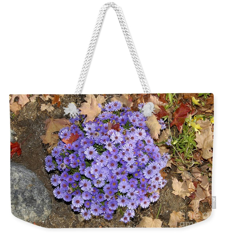 Fall Weekender Tote Bag featuring the photograph Fall Flowers by David Lee Thompson