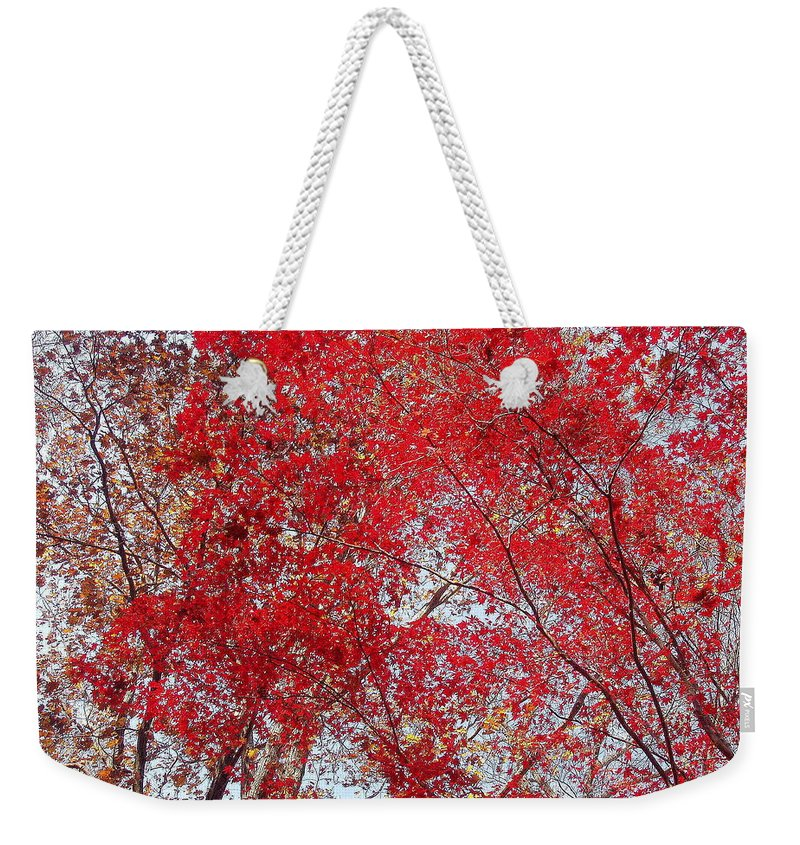 Leaves Weekender Tote Bag featuring the photograph Fall Foilage by Deborah Crew-Johnson