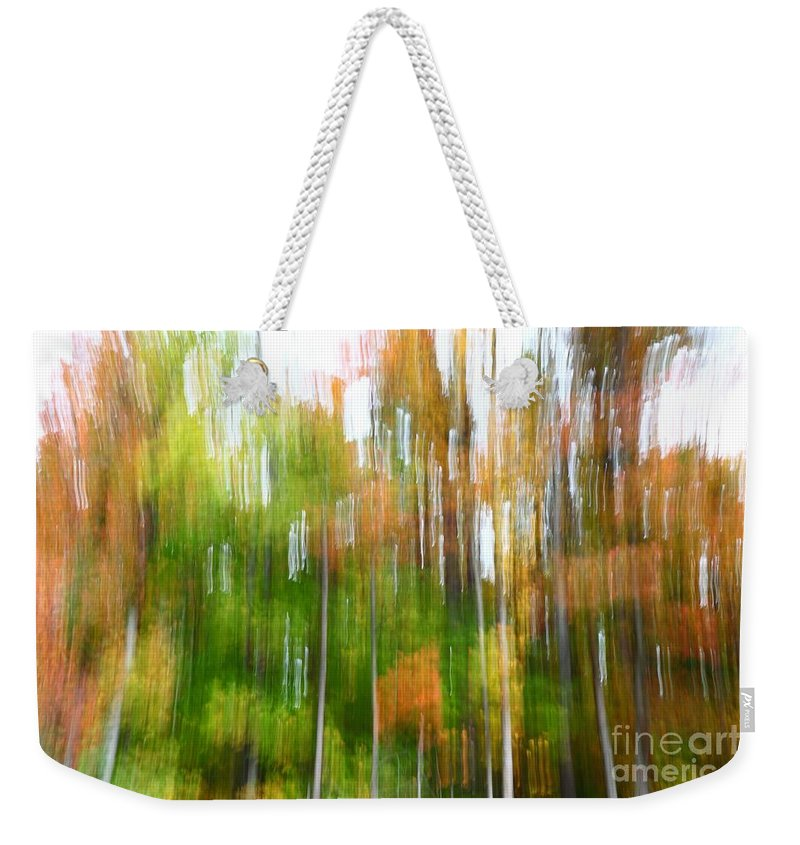 Forest Weekender Tote Bag featuring the photograph Fall Forest Colors by Dia Karanouh