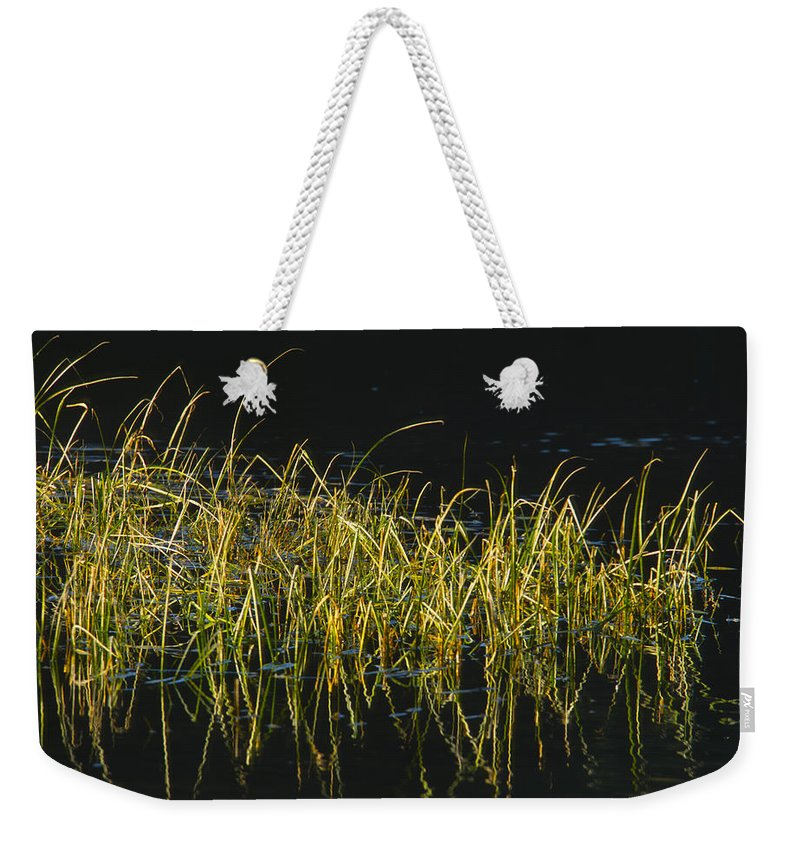 Snake River Weekender Tote Bag featuring the photograph Fall Grasses - Snake River by Sandra Bronstein