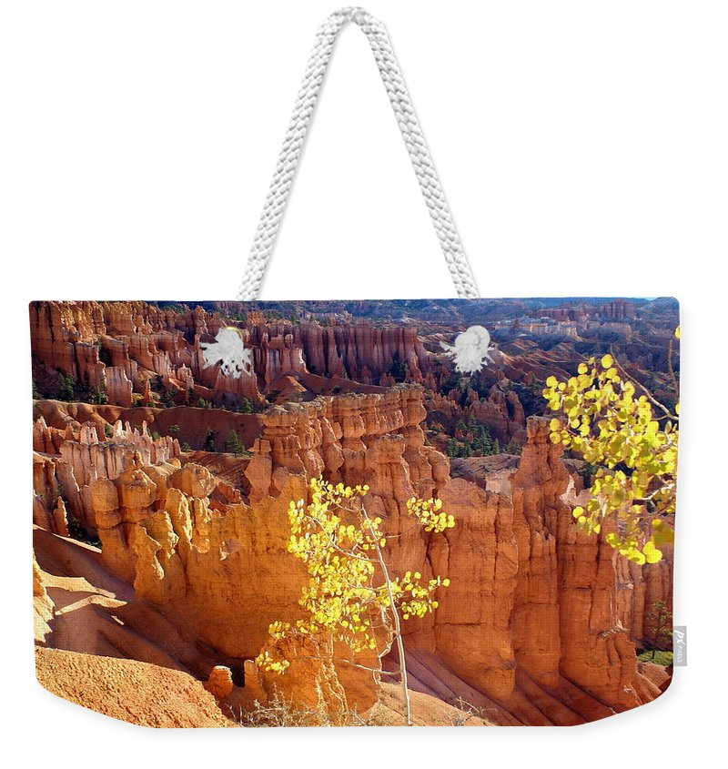 Bryce Canyon National Park Weekender Tote Bag featuring the photograph Fall In Bryce Canyon by Marty Koch