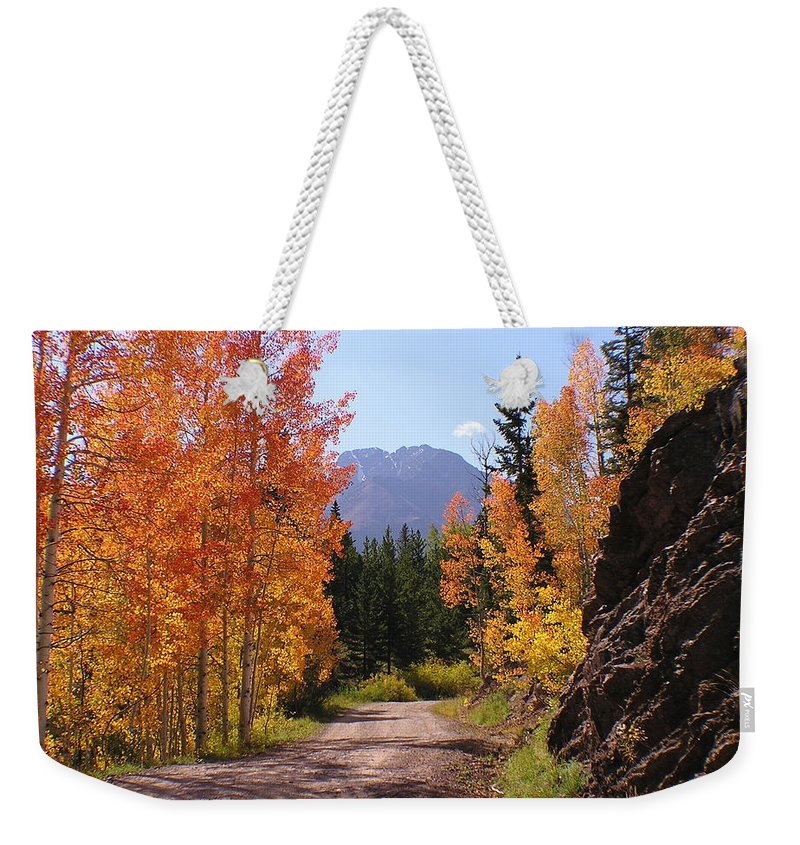 Trees Weekender Tote Bag featuring the photograph Fall In Colorado by Carol Milisen