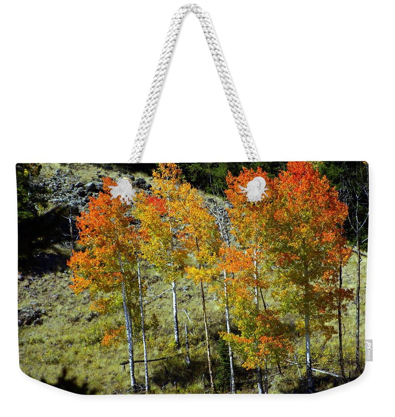 Weekender Tote Bag featuring the photograph Fall In Colorado by Marty Koch