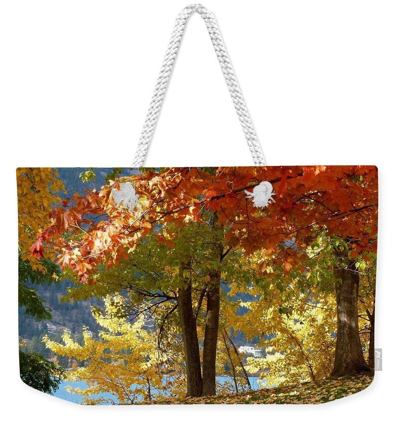 Kaloya Park Weekender Tote Bag featuring the photograph Fall In Kaloya Park 4 by Will Borden