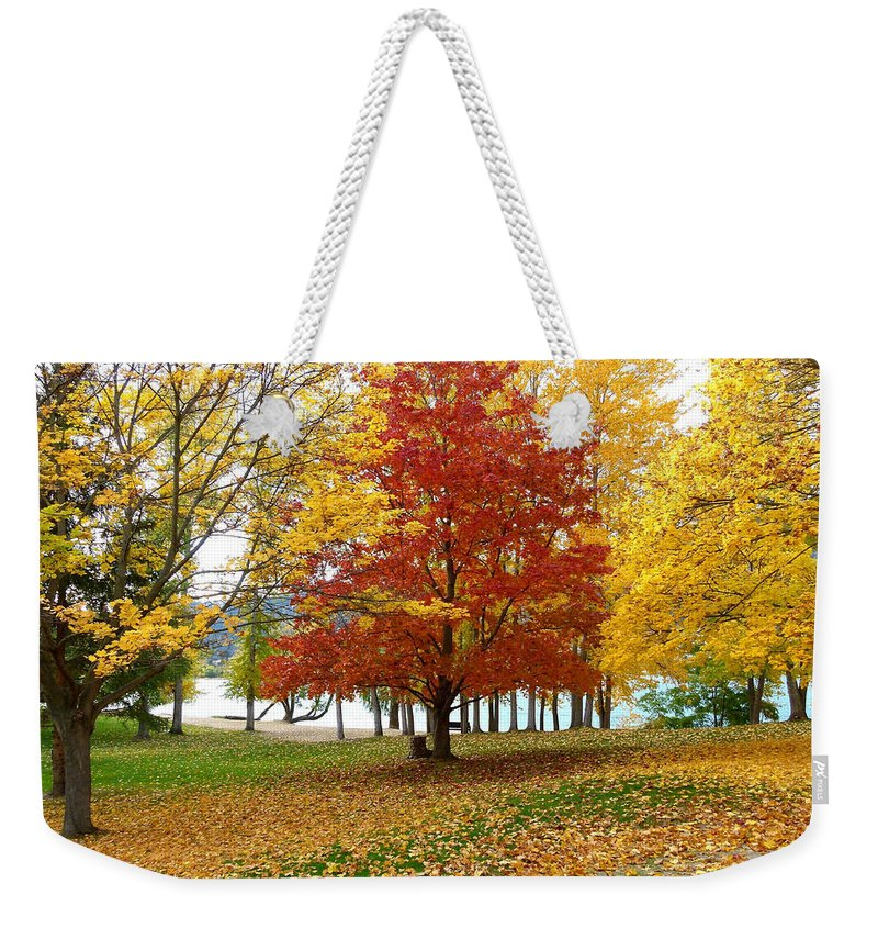 Kaloya Park Weekender Tote Bag featuring the photograph Fall In Kaloya Park 5 by Will Borden