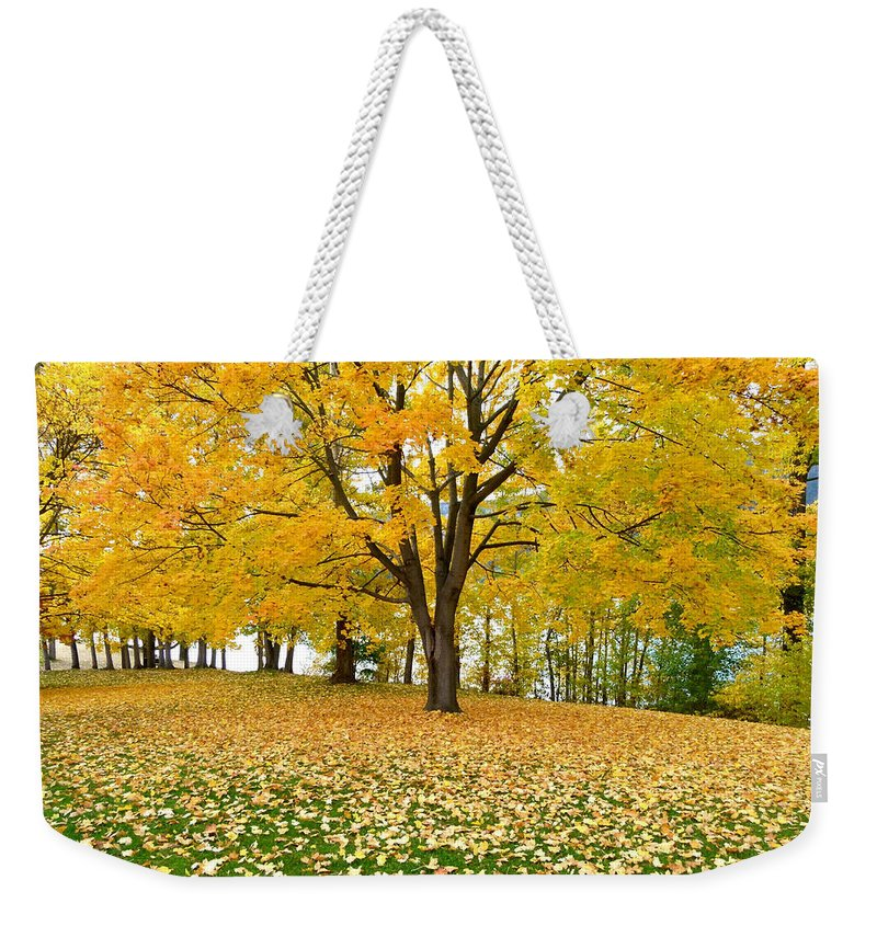 Kaloya Park Weekender Tote Bag featuring the photograph Fall In Kaloya Park 7 by Will Borden