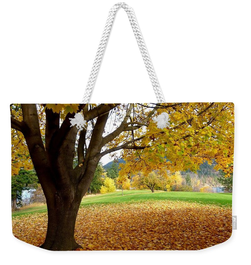 Kaloya Park Weekender Tote Bag featuring the photograph Fall In Kaloya Park 8 by Will Borden