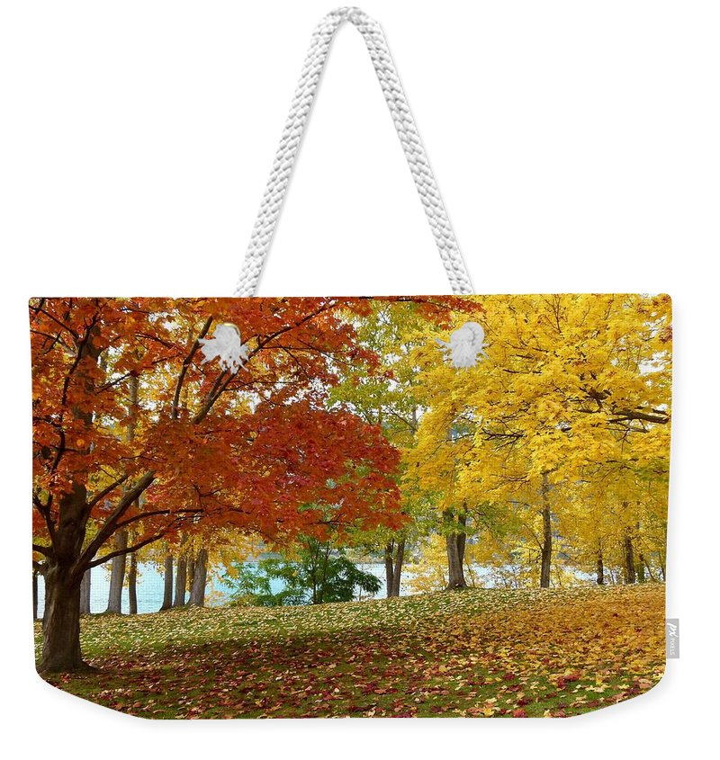 Kaloya Park Weekender Tote Bag featuring the photograph Fall In Kaloya Park 9 by Will Borden