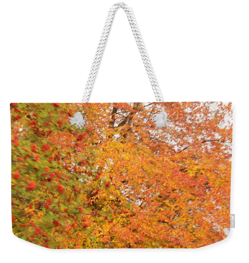 Leaves Weekender Tote Bag featuring the photograph Fall by Laurie Kidd