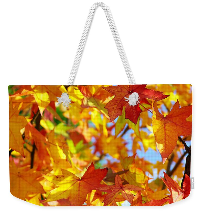 Autumn Weekender Tote Bag featuring the photograph Fall Leaves Background by Carlos Caetano