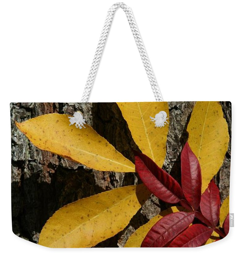 Fall Weekender Tote Bag featuring the photograph Fall Leaves by Tina Meador
