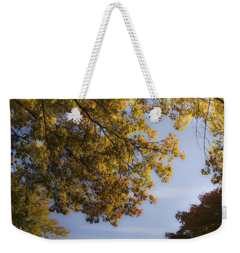 Fall Weekender Tote Bag featuring the photograph Fall Magic by Teresa Mucha