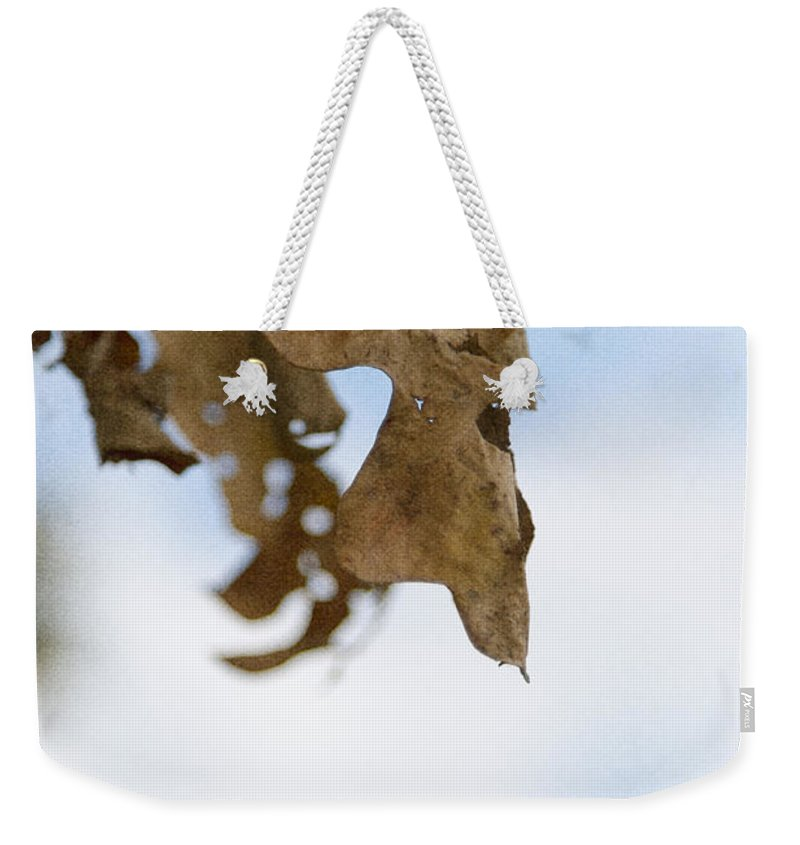 Leaf Weekender Tote Bag featuring the photograph Fall by Margie Hurwich
