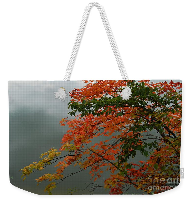 Trees Weekender Tote Bag featuring the photograph Fall by Michelle Hastings