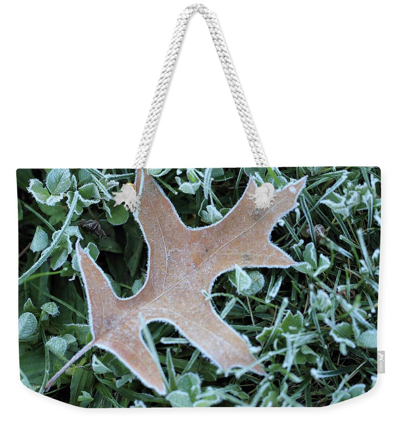 Ice Weekender Tote Bag featuring the photograph Fall On Ice by Shelley Neff