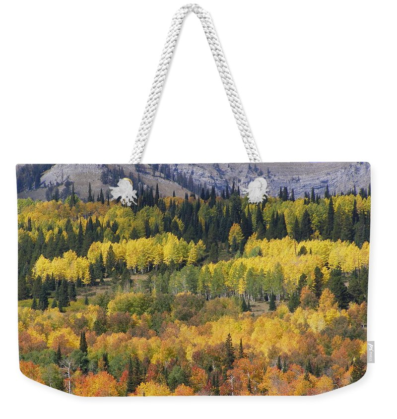 Fall Weekender Tote Bag featuring the photograph Fall On The Greys River by DeeLon Merritt