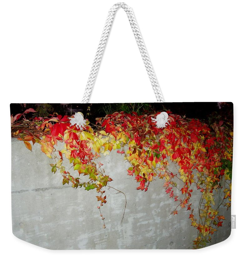 Fall Weekender Tote Bag featuring the photograph Fall On The Wall by Deborah Crew-Johnson