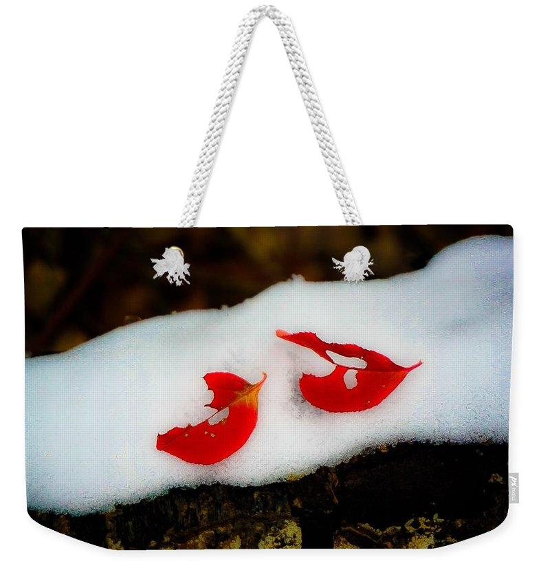 Fall Landscape Photograph Weekender Tote Bag featuring the photograph Fall Red Winter White by Desmond Raymond