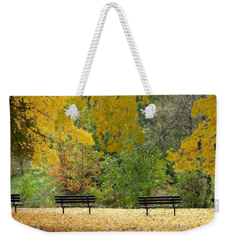 Fall Weekender Tote Bag featuring the photograph Fall Series 12 by Anita Burgermeister