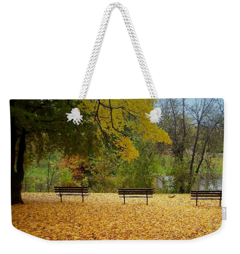 Fall Weekender Tote Bag featuring the photograph Fall Series 13 by Anita Burgermeister