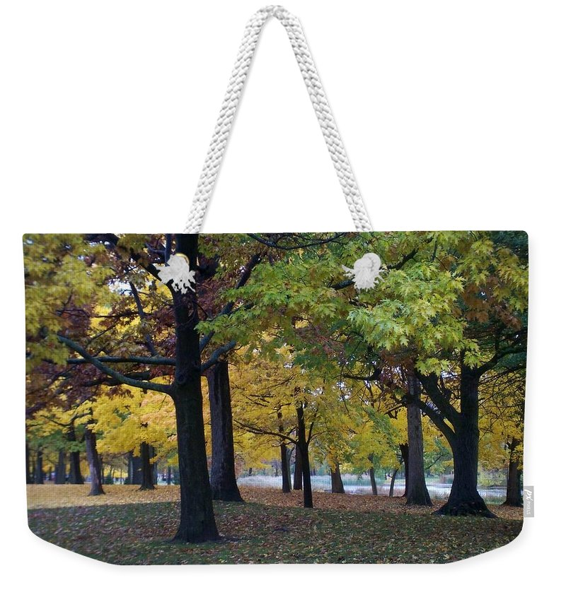 Fall Weekender Tote Bag featuring the photograph Fall Series 14 by Anita Burgermeister