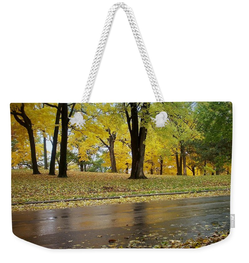 Fall Weekender Tote Bag featuring the photograph Fall Series 15 by Anita Burgermeister