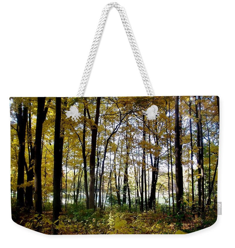 Fall Weekender Tote Bag featuring the photograph Fall Series 3 by Anita Burgermeister