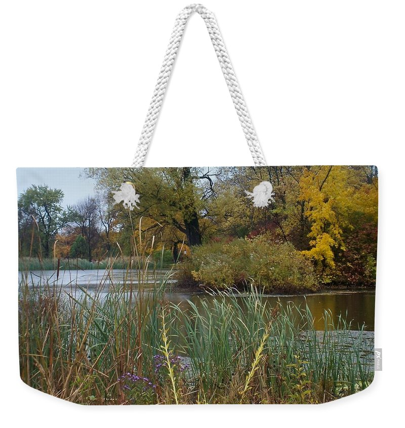 Fall Weekender Tote Bag featuring the photograph Fall Series 7 by Anita Burgermeister