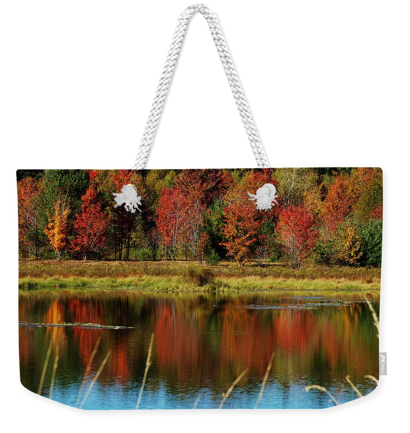 Autumn Weekender Tote Bag featuring the photograph Fall Splendor by Linda Murphy