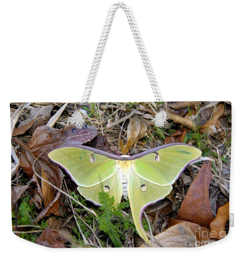 Moth Weekender Tote Bag featuring the photograph Fallen Angel by David Lee Thompson