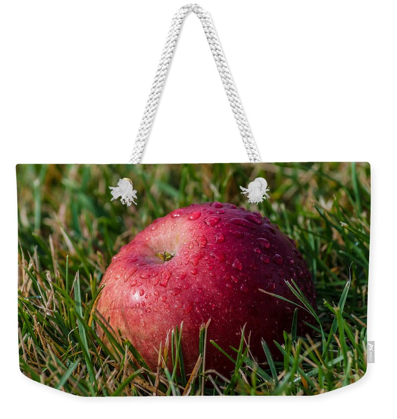 New York Weekender Tote Bag featuring the photograph Fallen Apple by Ray Sheley