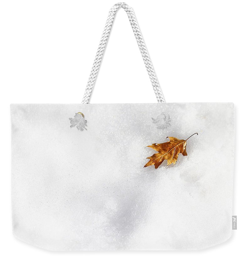 Evelina Kremsdorf Weekender Tote Bag featuring the photograph Fallen by Evelina Kremsdorf