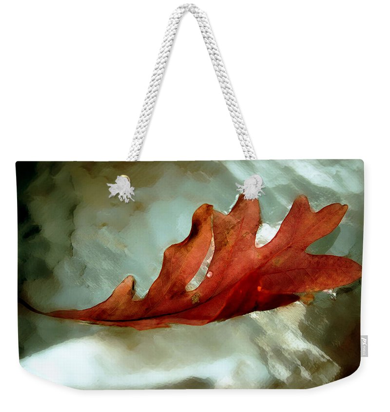 Nature Weekender Tote Bag featuring the photograph Fallen Leaf by Linda Sannuti